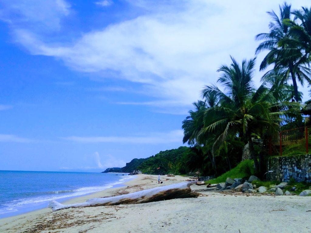 Life at Sayulita beach